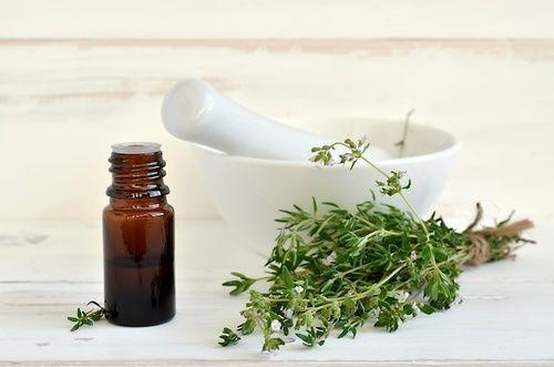 TIMO  (Thymus vulgaris ) Antibiotico  naturale.